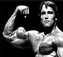 Arnold Bicep Flex arnold schwarzenegger arm workout