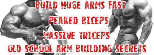 build huge arms