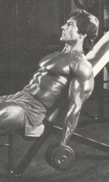 frank zane arm workout